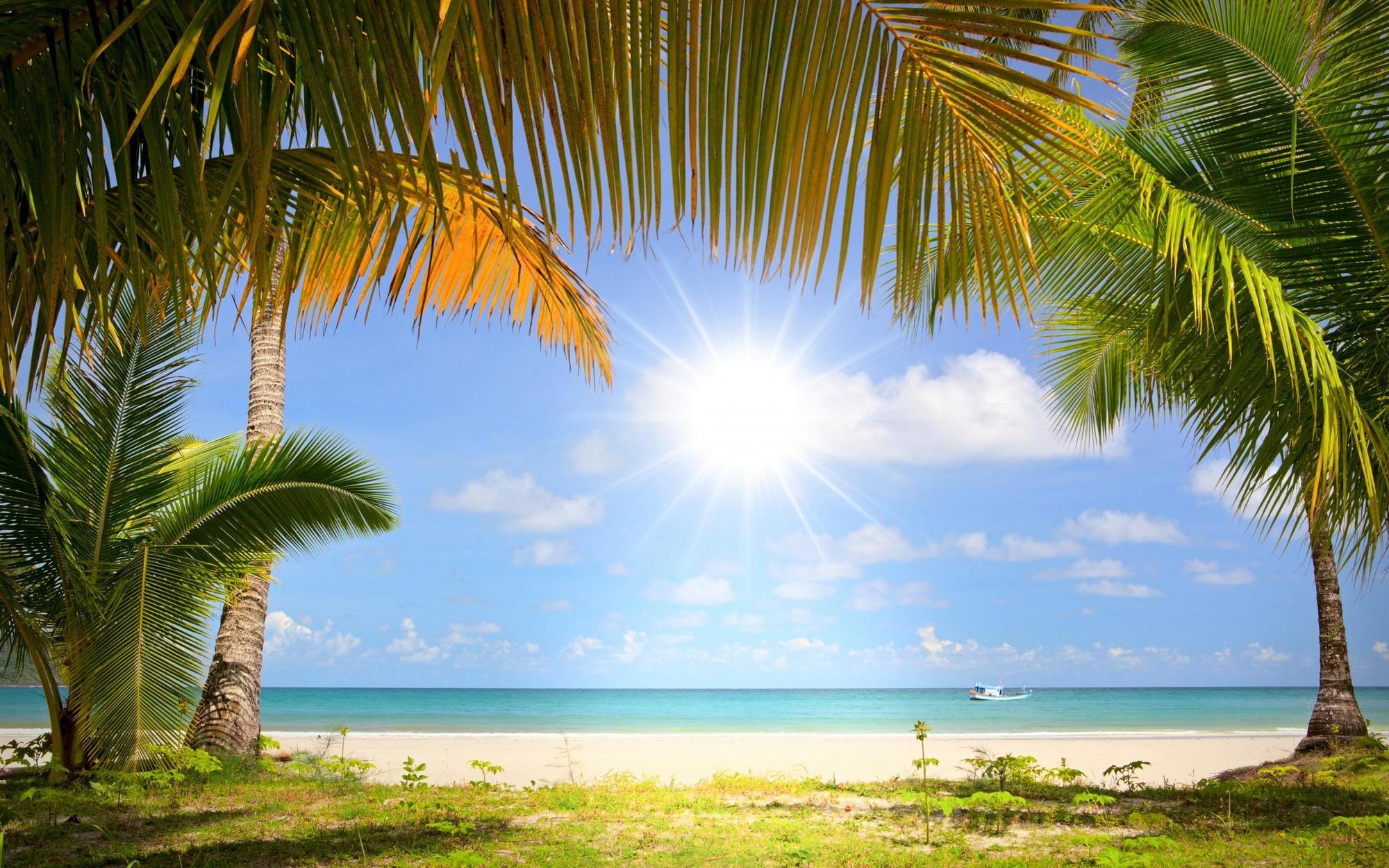 beach_summer-1410136m