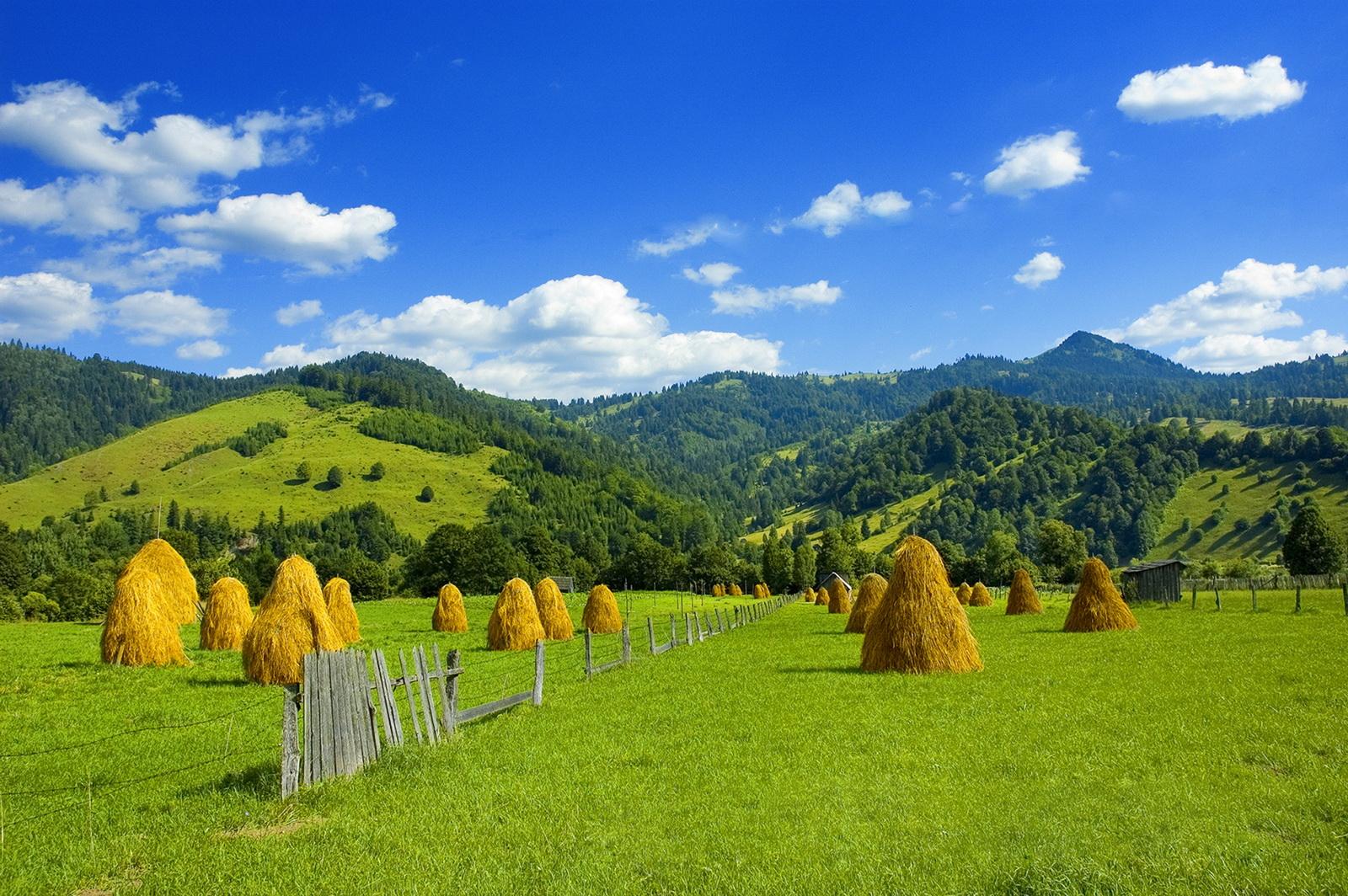 Cool tour transylwania tropem drakuli rumunia kraina for Romania landscape
